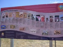 fauna information at riverside camping site near longreach